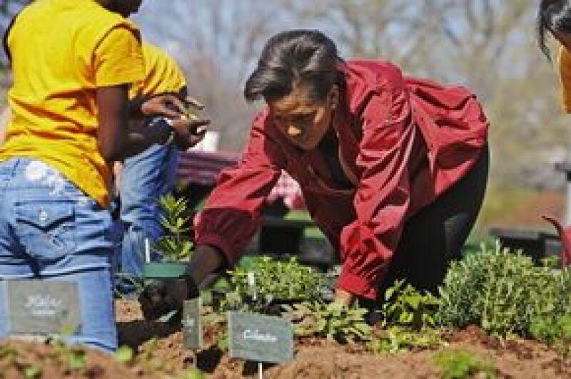 La primera dama estadounidense y 25 escolares sembraron plantas en la Casa Blanca; los vegetales que se cosechen serán usados en la sede presidencial y en comedores populares para indigentes.