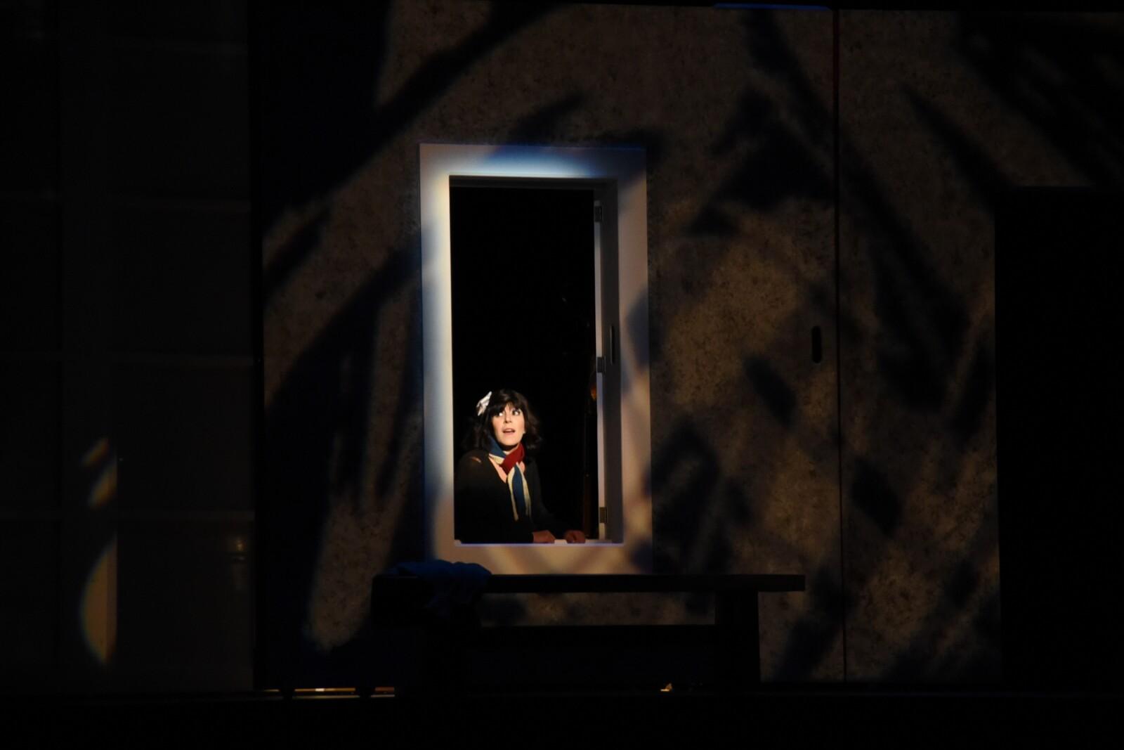 Piaf: Voz y Delirio