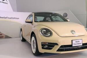 Volkswagen Beetle 65.jpg