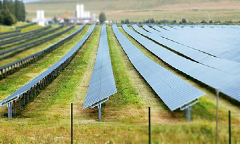 El Foro Económico del Medio Ambiente ha asignado 12,500 mdd en donaciones. (Foto: GettyImages)