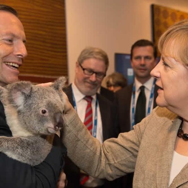 Angela, koala, G2O