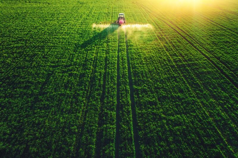Cultivo - Agricultura