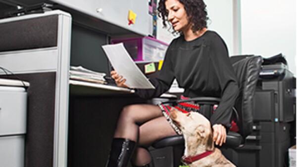 Mayor producitividad y socialización son algunos beneficios de llevar a tu mascota a tu trabajo. (Foto: Carlos Aranda)