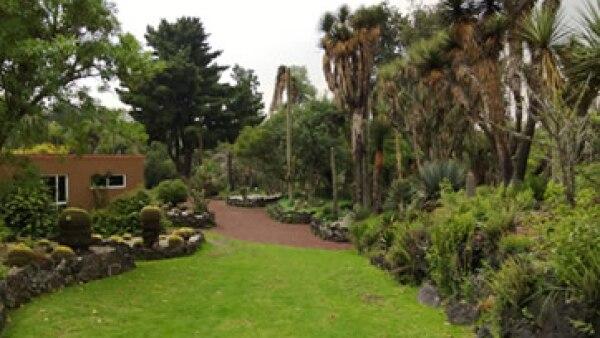 El jardín botánico tiene diferentes especies de plantas y animales. (Foto tomada de chilango.com)