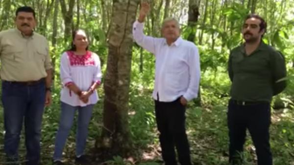 El equipo de rescate al campo: el senador electo Javier May, la futura secretaria María Luis Albores López Obrador y el futuro funcionario Hugo Chávez.