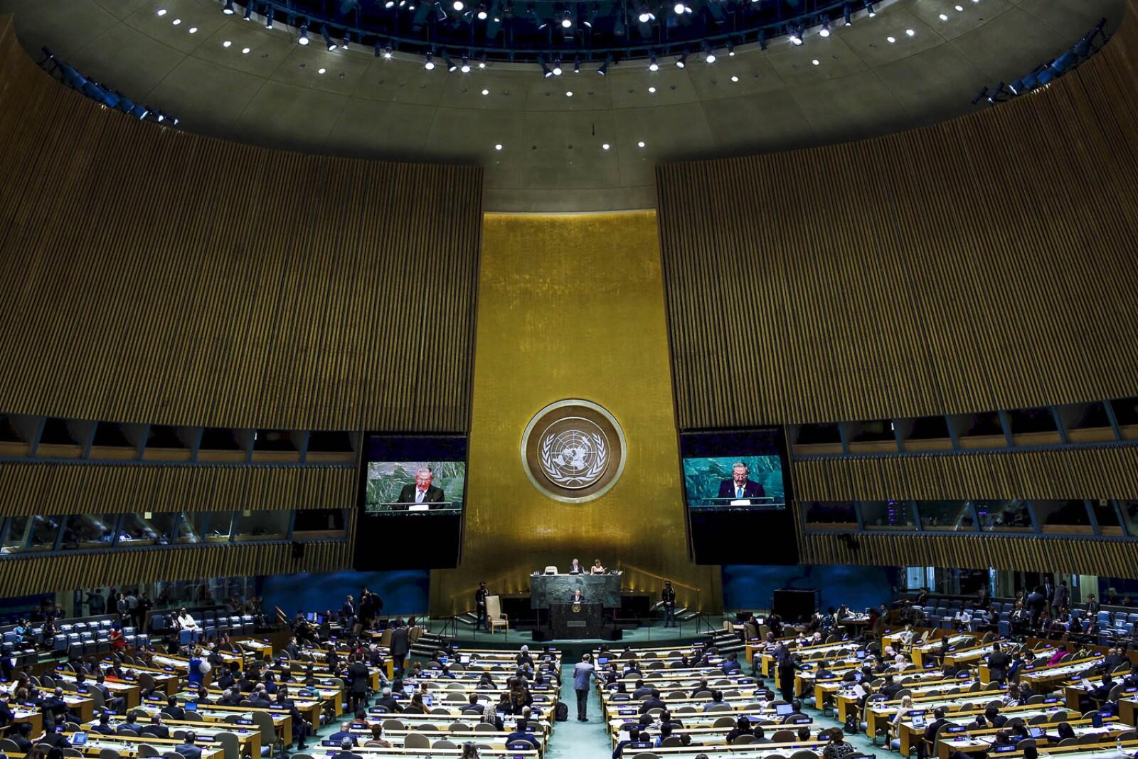 Ante Naciones Unidas