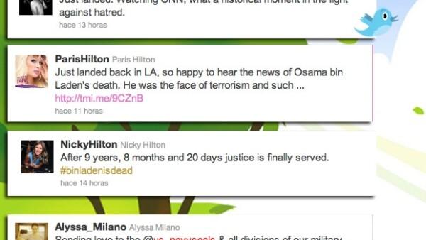 Celebridades como Lady Gaga, Lindsay Lohan, Katy Perry, Paris Hilton, entre otros, utilizaron sus cuentas de Twitter para pronunciarse con respecto del líder de Al Qaeda.