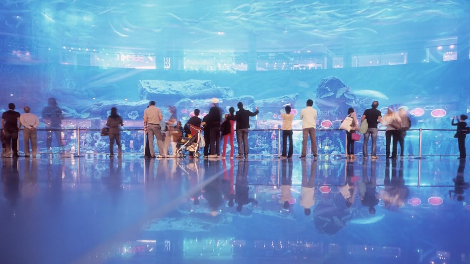 Más de 140 especies animales conviven en un zoológico acuático y en un tanque submarino dentro del centro comercial.