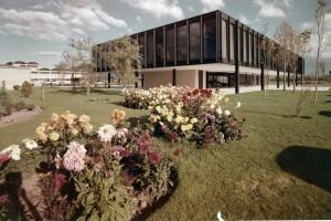 Oficinas de Bacardí - Ludwig Mies Van der Rohe