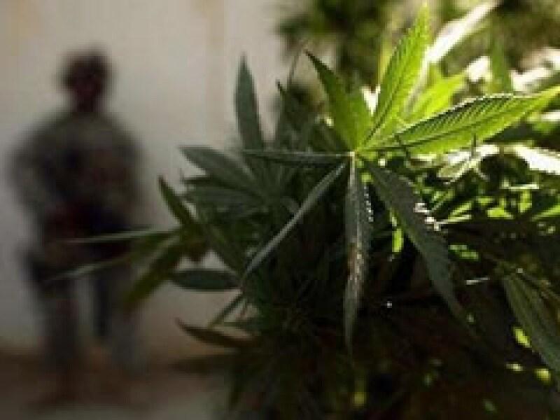 La ONU reconoció los esfuerzos del gobierno mexicano por combatir al narcotráfico. (Foto: Archivo)