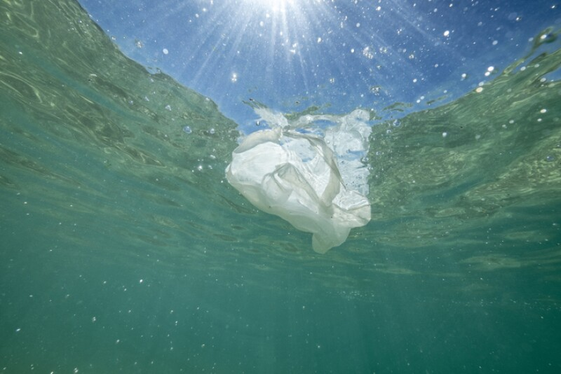 Plastic bag floating in the sea.