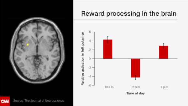 cerebro infografía / media principal