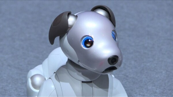 El nuevo Aibo, el perro robot de Sony, quiere sorprenderte con sus trucos