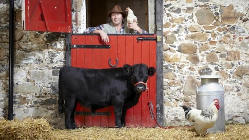 Archie el toro más bajo Guinness