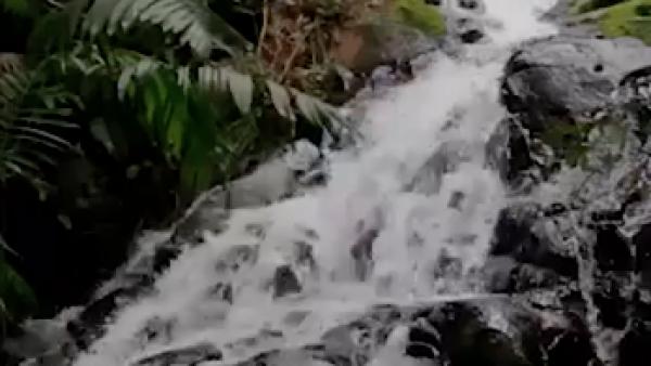 La Semarnat difunde mitos y realidades sobre las reservas de agua en México
