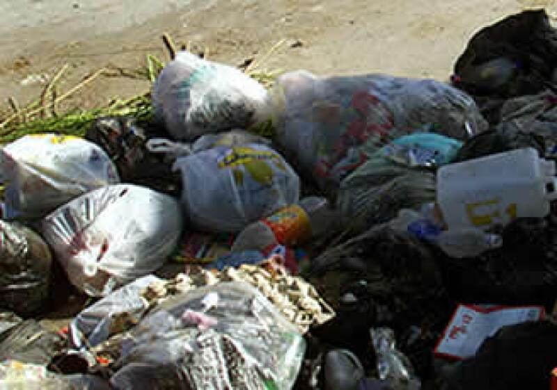 Las bolsas biodegradables no son la solución (Foto: )
