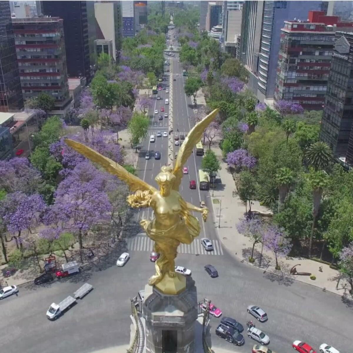 Famoso El Mismo Día Se Reanuda Friso - Ejemplo De Colección De ...