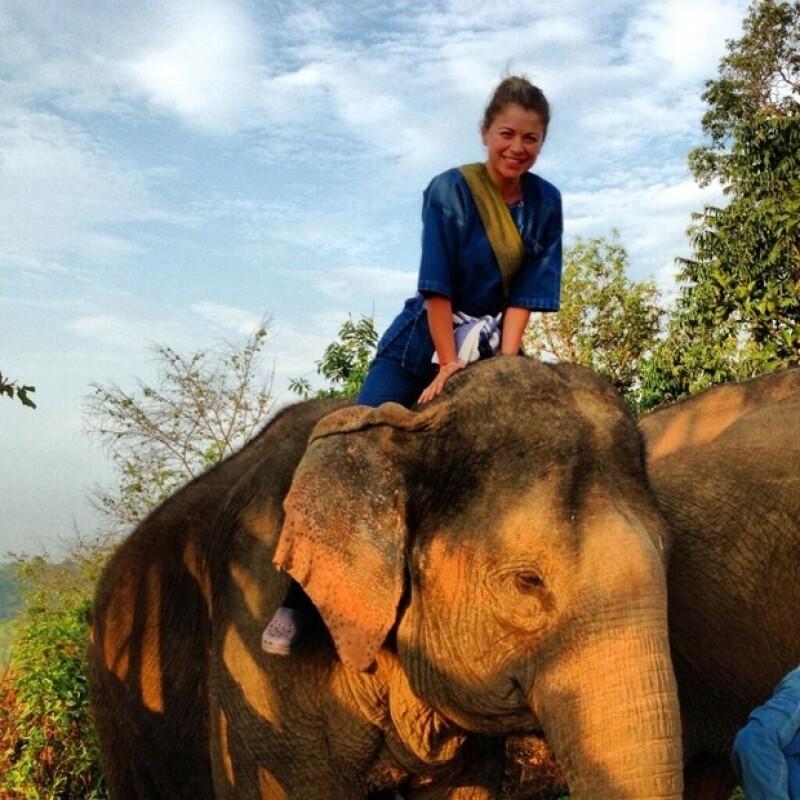 La esposa de Emiliano Salinas compartió con sus seguidores de Twitter una foto donde aparece arriba de un elefante, pero hubo algo más que resaltó... su calzado, por lo que comenzó a ser criticada.