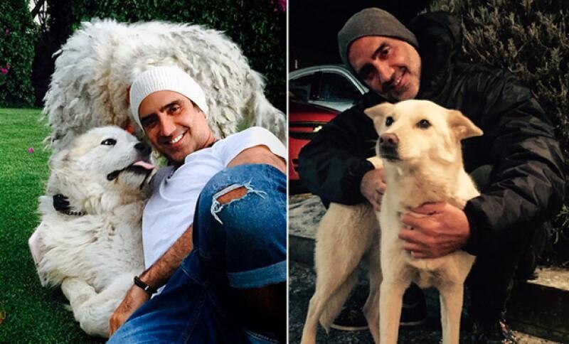 No duda de compartir tiempo con sus mascotas apenas llega a casa.