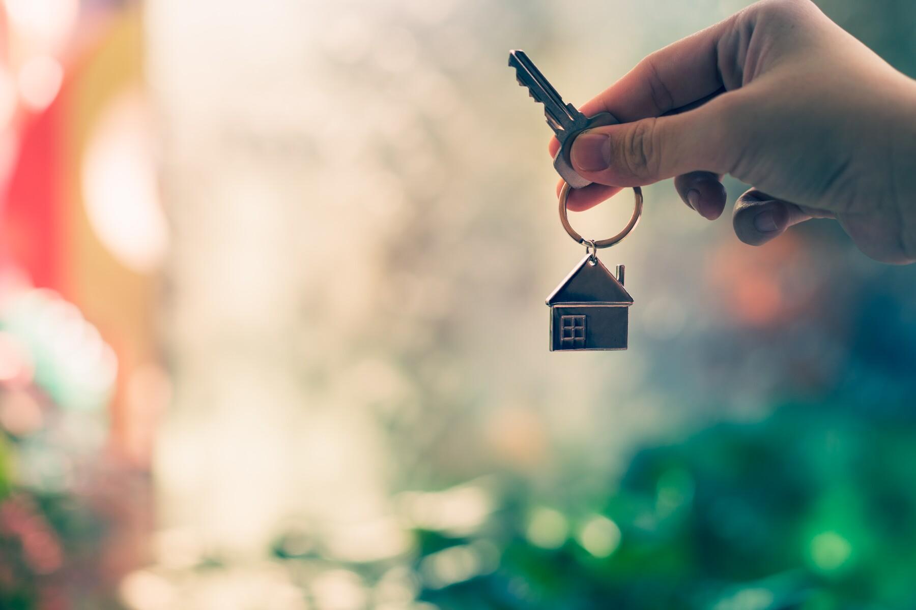 Durante el primer año de arrendamiento se pueden percibir ganancias de hasta 33%
