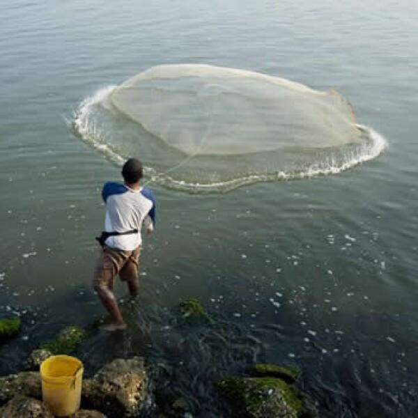 agua, escasez, pesca, lago, atardecer