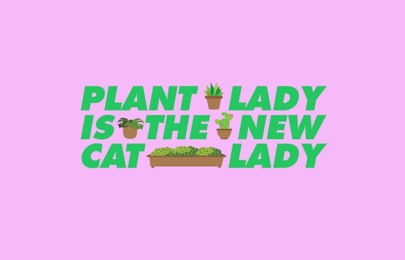 plant-lady-nueva-cat-lady-plantitas