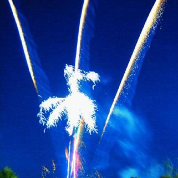 Los fuegos artificiales iluminaron la noche.