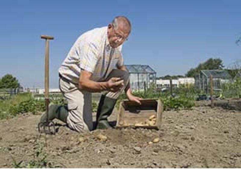 Los cursos beneficiarán a 2,000 productores y empresarios del agro. (Foto: Jupiter Images)