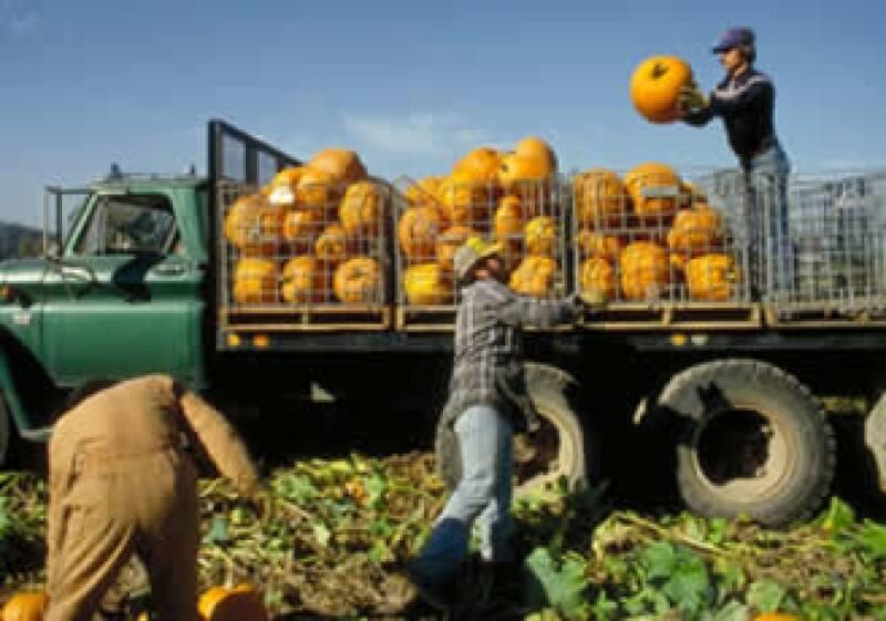 El empresario Patrick Struebi exporta frutas que fueron sembradas en México, con prácticas sustentables y una estructura operativa organizada. (Foto: Jupiter Images.¿)
