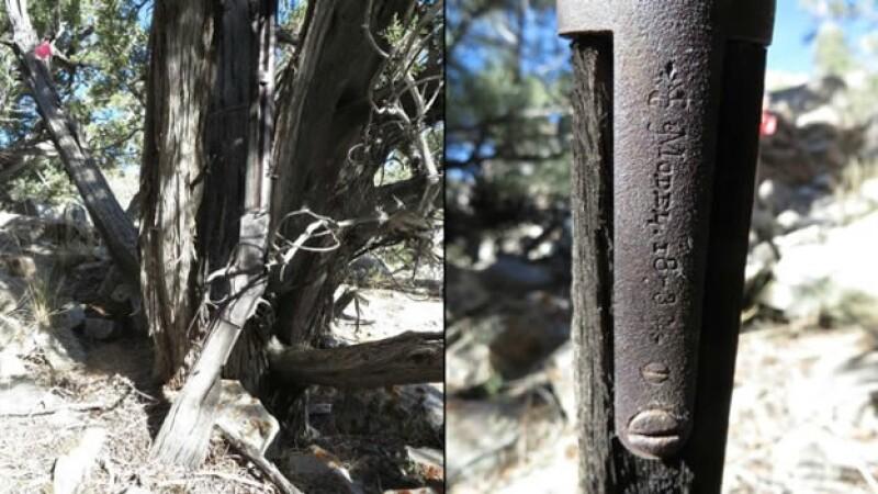 El rife de más de 100 años de antigüedad que fue encontrado en un parque de Estados Unidos