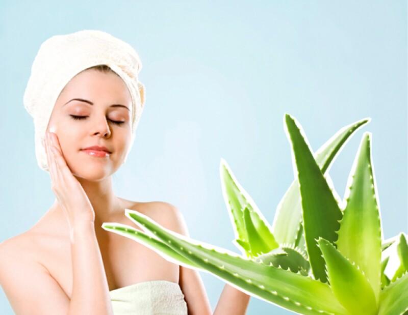 El aloe vera tiene propiedades hidratantes haciéndolo ideal para humectar la piel reseca.