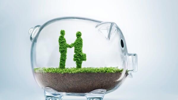 Una filosofía verde