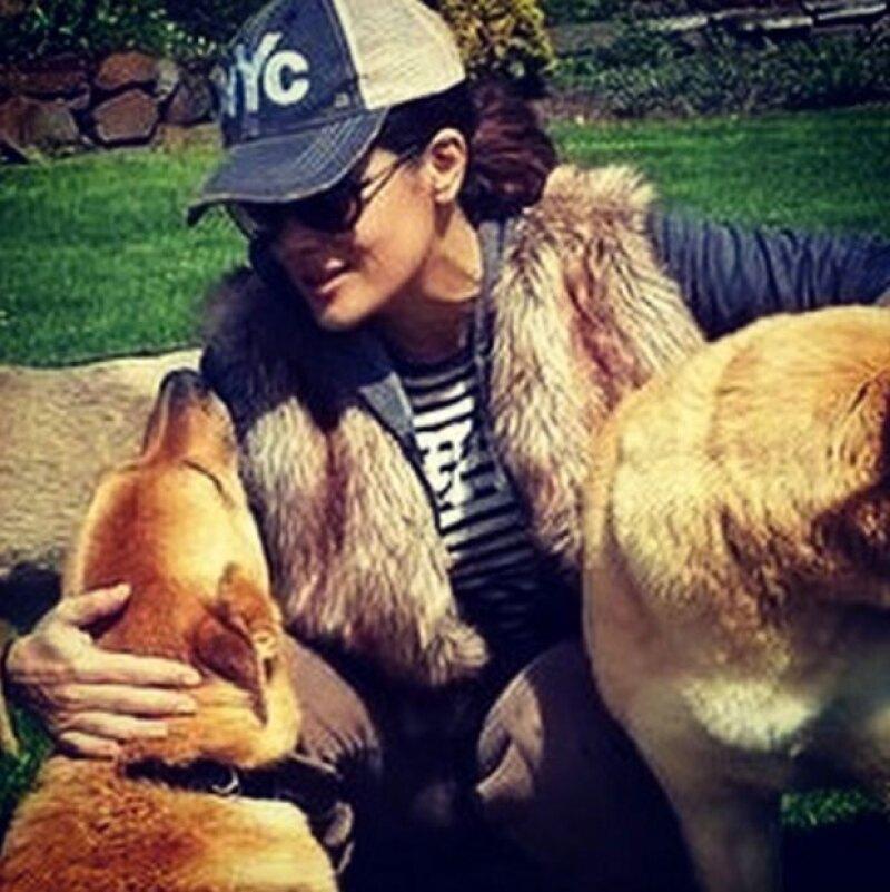 Salma acaba de perder a uno de sus perros.