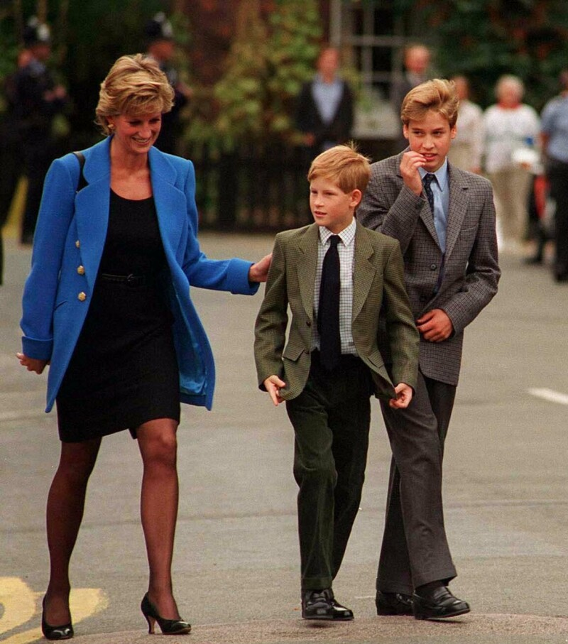 Diana de Gales, Harry y William