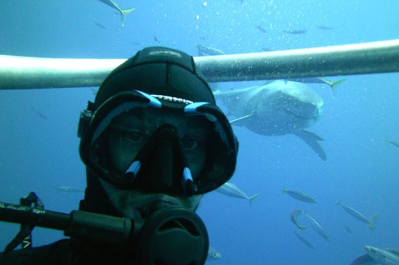 Al año, más personas mueren por tomarse una selfie que por un ataque de tiburón.