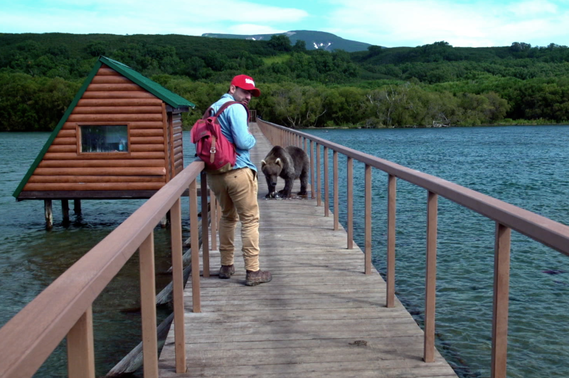 Arturo Islas Allende osos pardo