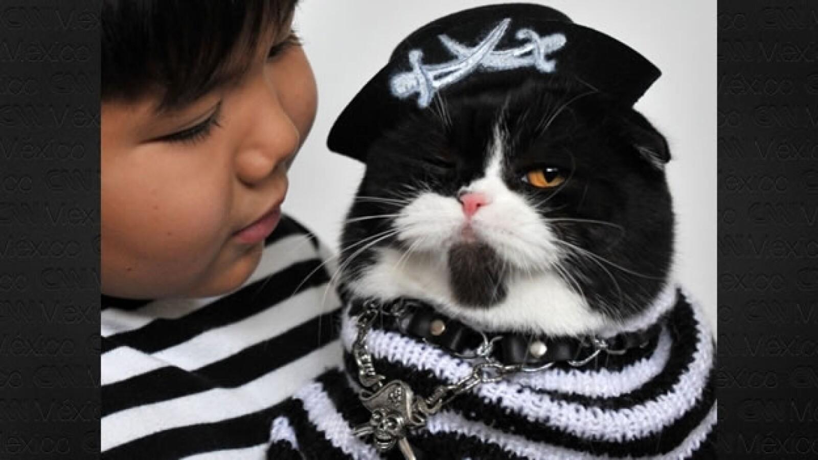 disfraces mascotas 6