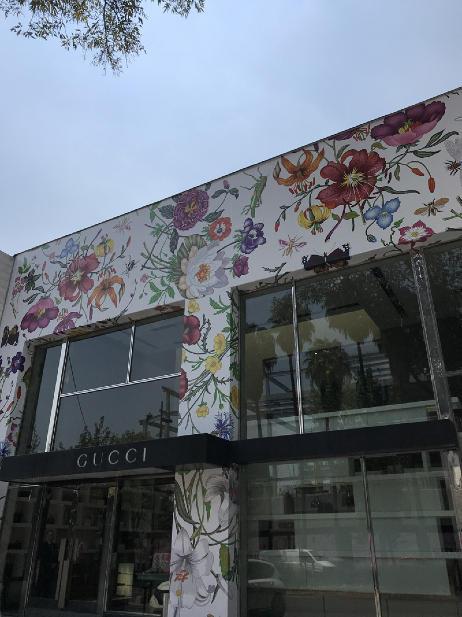 Gucci-Polanco-En-Flores