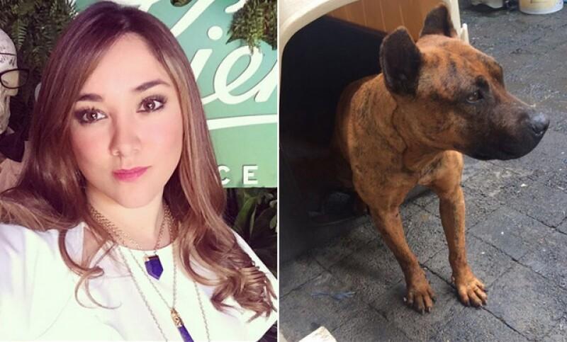 La actriz no pudo evitar querer ayudar a la perrita cuando la vio caminando en pleno segundo piso de la Ciudad de México y luego compartió el video del momento.