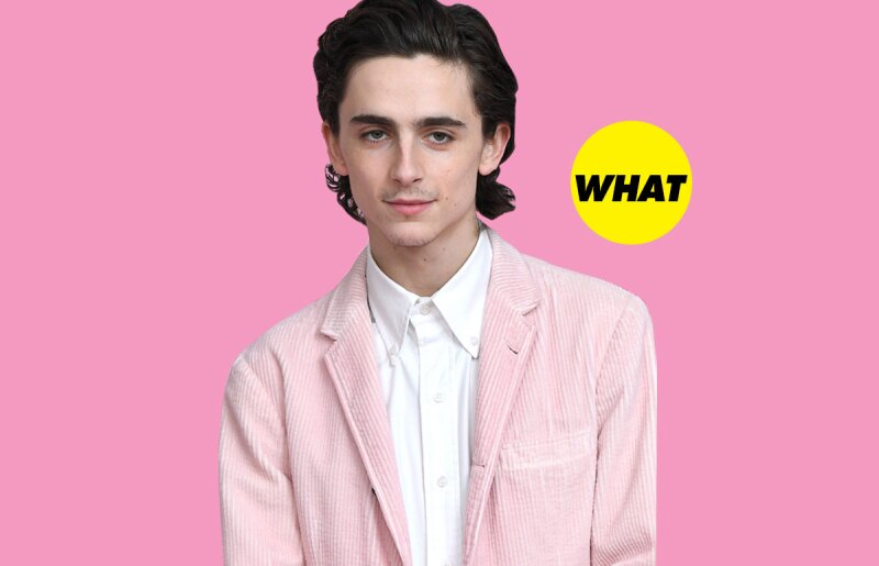 timothee-chalamet-bigote-red-carpet