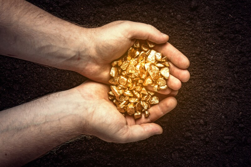 Gold nuggets the hands of the miner.  The working hands of a peasant with pure gold. top view