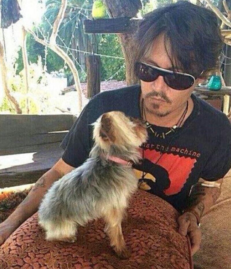 El actor con uno de sus amados perros terrier yorkshire.
