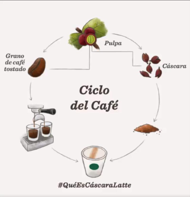 Cascara Latte la nueva bebida de Starbucks