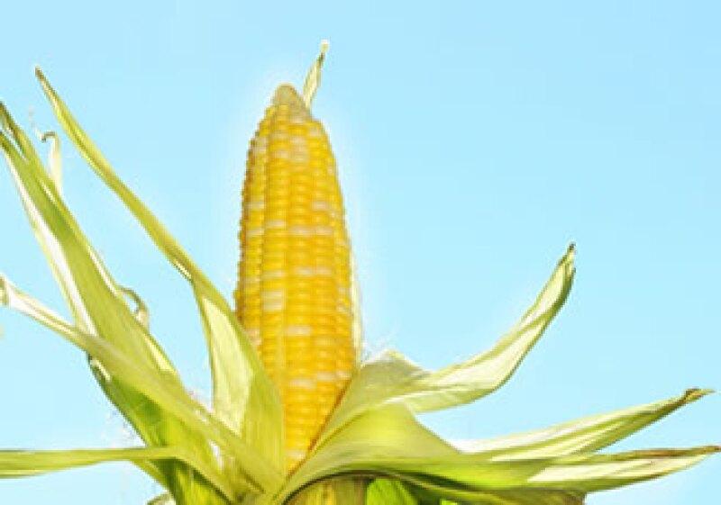 La merma de las reservas hizo que subieran los contratos de maíz para entrega a término. (Foto: Photos to Go)
