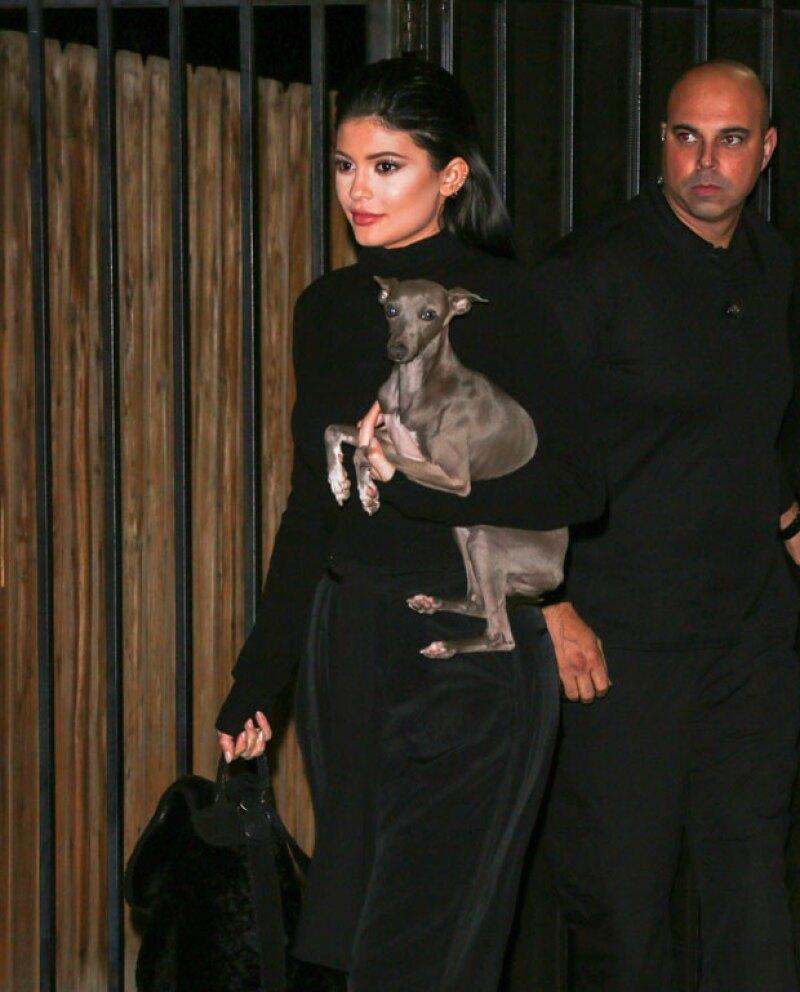 La menor de las Kardashian publicó un video la semana pasada de dos de sus mascotas, generando indignación entre sus fans por lo delgados que se veían.