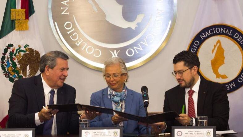 Infonavit notarios Olga Sánchez