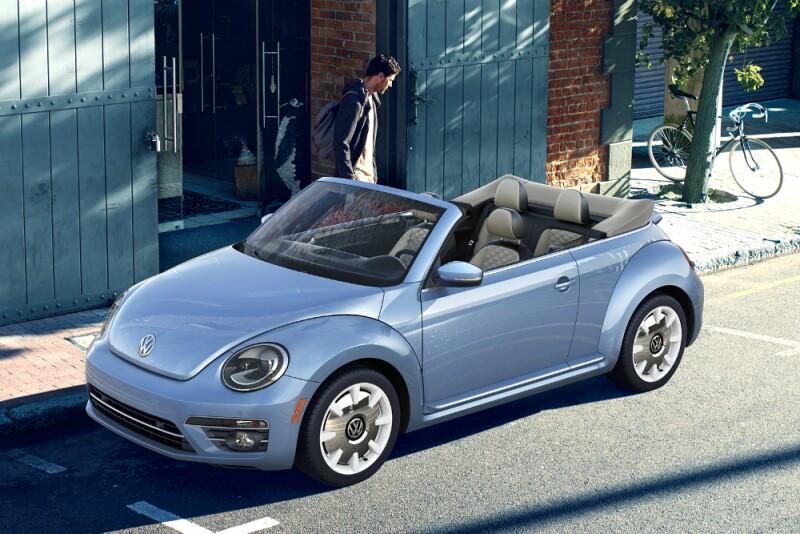 Beetle 03.jpg