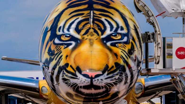 Librea de tigre