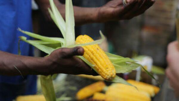 México tiene un déficit de una tercera parte del maíz que consume su población.(Foto: GettyImages/Archivo )
