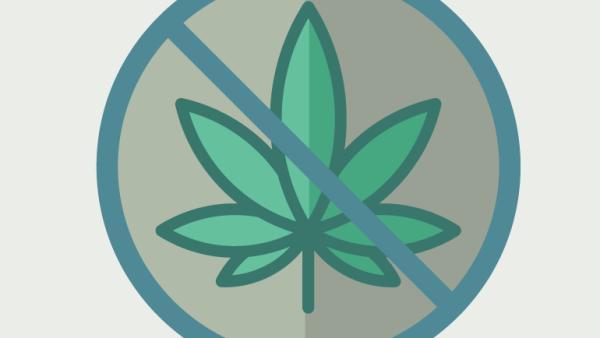 marihuana efecto 1